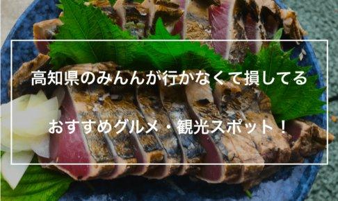 鰹のタタキ